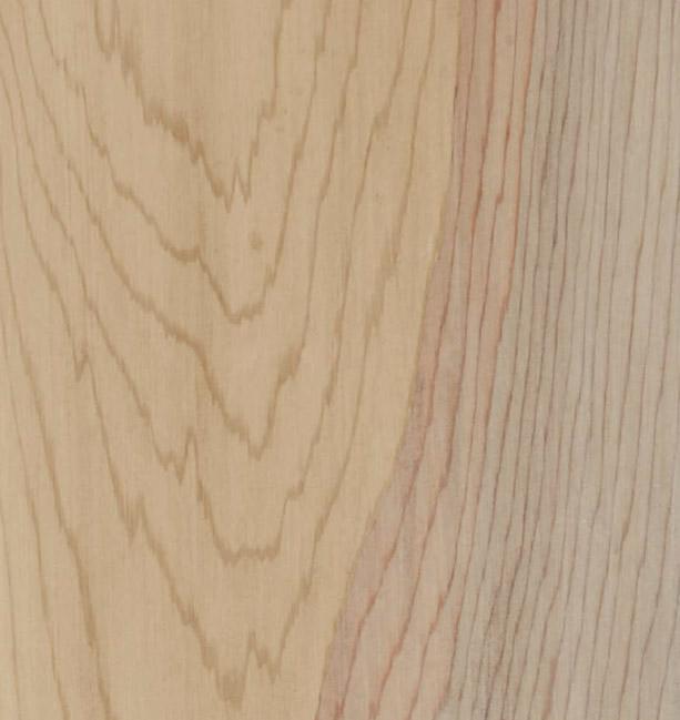 bois naturel spa softub